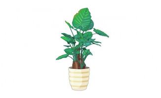 二维动画flash植物花卉素材