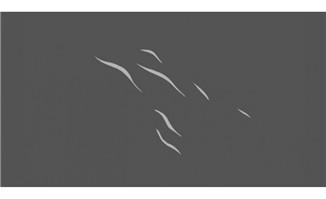 飘散的烟雾flash动画效果素