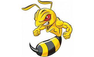愤怒的大黄蜂卡通形象p