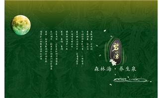 碧水湾度假flash网站片头