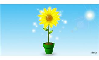 花盆里的向日葵flash动画