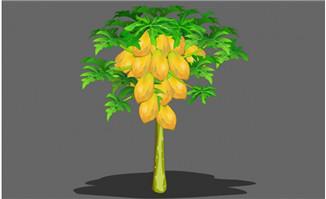 木瓜树左右摇摆flash动画