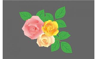漂亮的白玫瑰flash素材