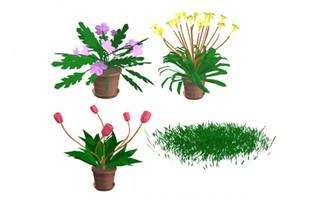 4种花卉花朵盆景造型设计
