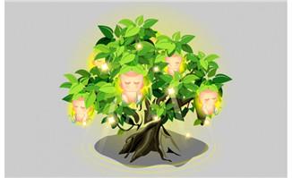 手绘卡通人参果植物素材