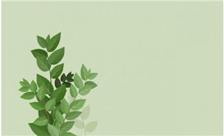 秋葵植物flash动画素材_flash二维动画素材mg动画制作矢量图素材扁平图片