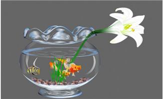 鱼缸里花草金鱼flash动画