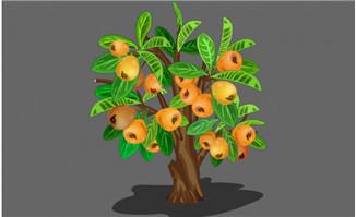 枇杷树手绘造型设计素材