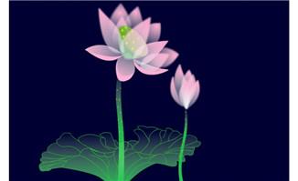 中国风莲花背景设计素材