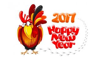 2017新年贺卡矢量图