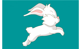奔跑的兔子flash动画