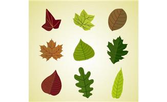 植物flash 漫品购 mg动画制作素材 flash动画素材 矢量图素材图片