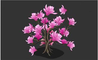 开满粉红花朵的树木
