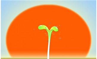 从种子到到发芽过程Flas