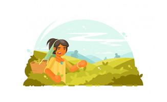 背着背篓摘茶叶的女性矢