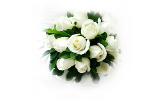 <b>新娘的白玫瑰花图片素材</b>