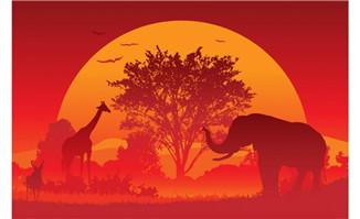 夕阳下非洲大象动物剪影插画设计矢量素材