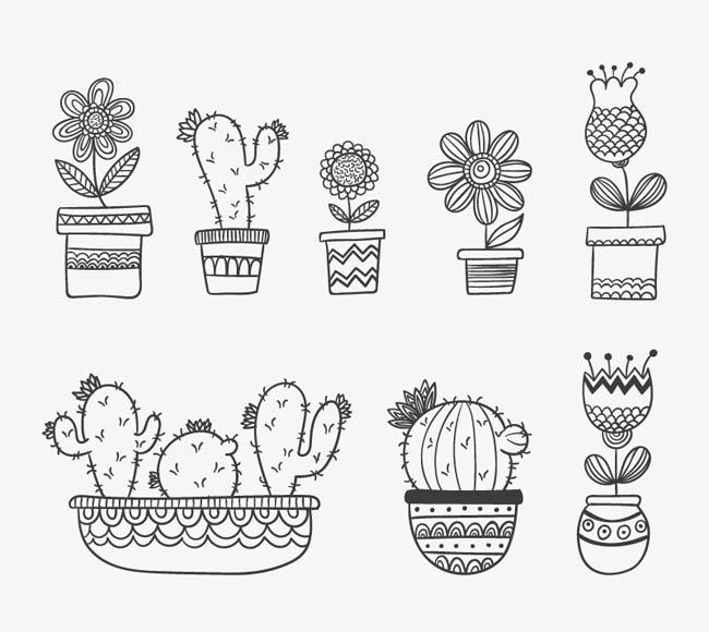 黑白手绘花卉仙人掌盆栽设计矢量素材
