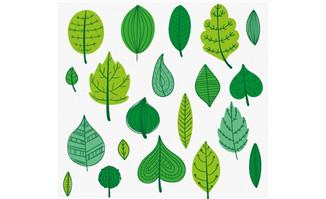各种造型的树叶矢量素材