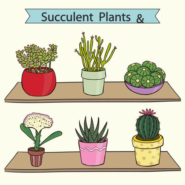 手绘可爱盆栽多肉植物素材下载