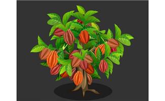 巴旦木坚果flash植物动态效