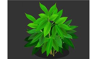 繁茂的绿叶flash植物动画素
