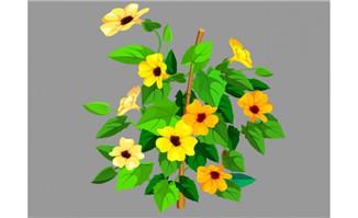 植物花卉黑眼花矢量flas