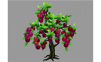紫红色李子果实植物树f