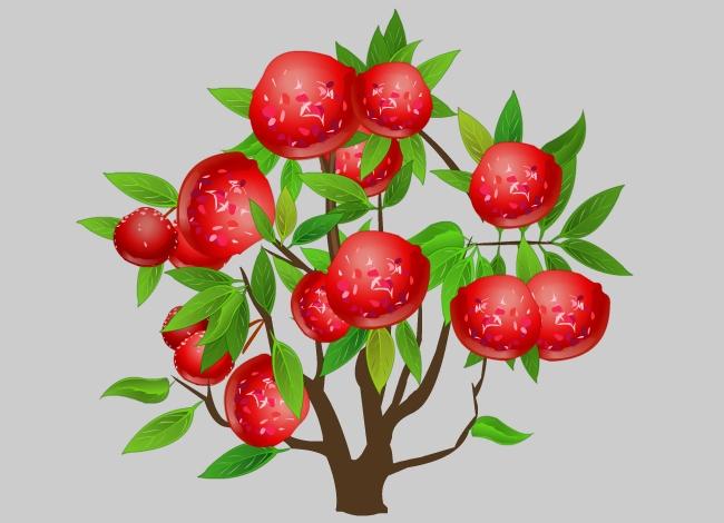主页 视频动画 植物flash > 红色的李子果实累累的树flash动画效果图片