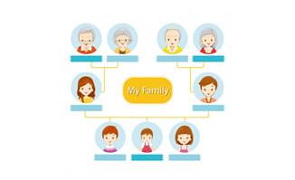 扁平化家庭成员组成关系