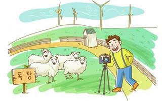漫画手绘羊群旁拍照的男子