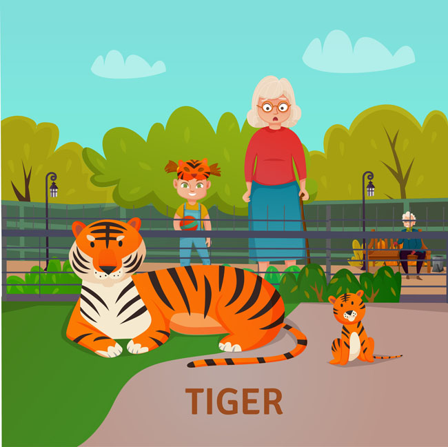 在动物园看老虎卡通动漫儿童