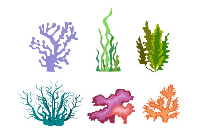6款不同颜色海藻植物素材下载 海底海藻植物矢量图  海藻植物造型设