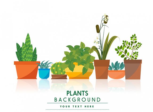 办公植物小盆景造型设计矢量素材 扁平植物素材  扁平化多种植物小