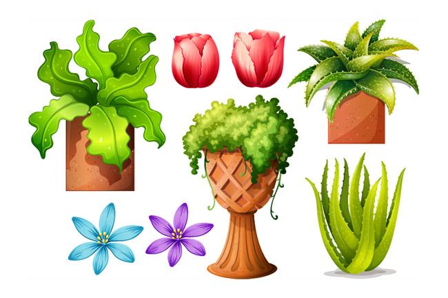 各种花瓣花卉植物造型设计素材