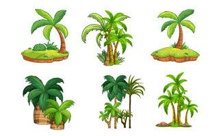 手绘精致的海岛植物树木