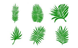 绿色植物叶子造型设计矢