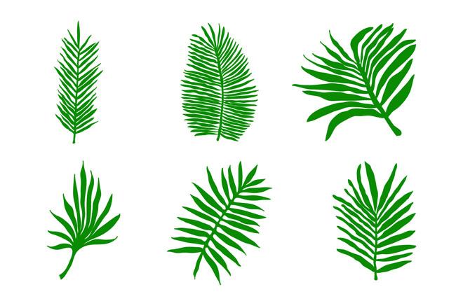 绿色植物叶子造型设计矢量素材 小清新手绘绿叶素材  绿色植物树木