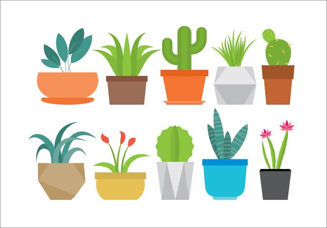 扁平化盆景小植物花卉造型设计图标  植物盆栽矢量素材  扁平化植物
