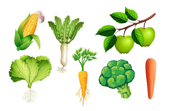 卡通手绘漫画水果食物蔬菜元素素材
