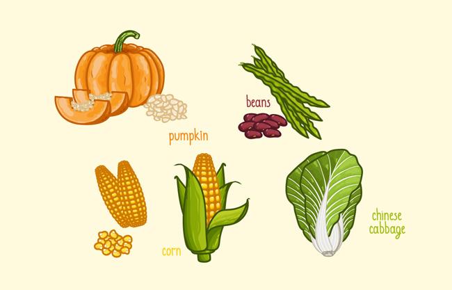 手绘蔬菜食物创意卡通背景设计素材图片