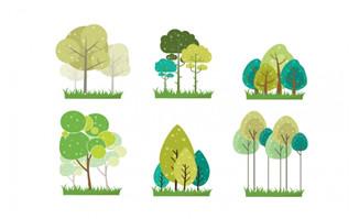 扁平化绿色植物春季大树