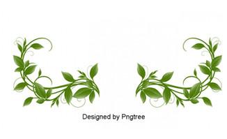 绿色叶子花边图案设计