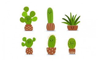 绿色植物盆栽仙人掌小清