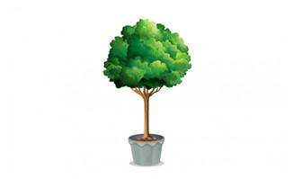 卡通绿植小树盆栽AI素材