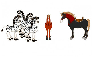 斑马各种马的站姿造型设
