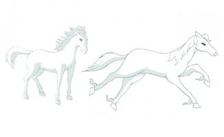 白马站姿和奔跑的白马动