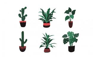 创意卡通手绘绿植植物盆