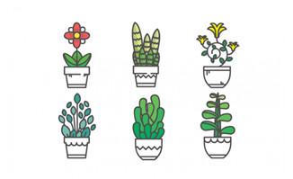 绿植花卉盆栽插图漫画插画矢量设计素材