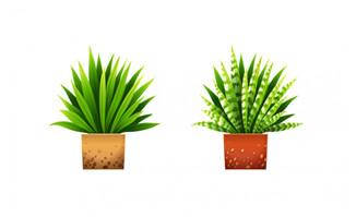 手绘植物盆栽园艺元素素材下载